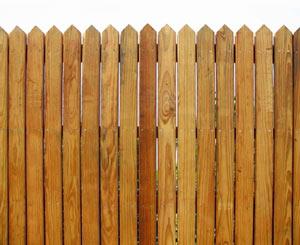 Забор из дерева. Забор - штакетник